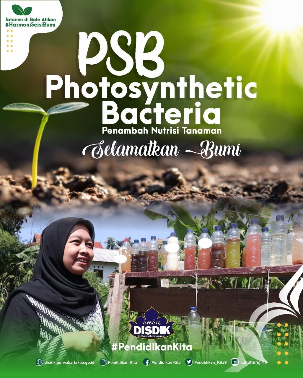 Cara Membuat Bakteri Fotosintesis